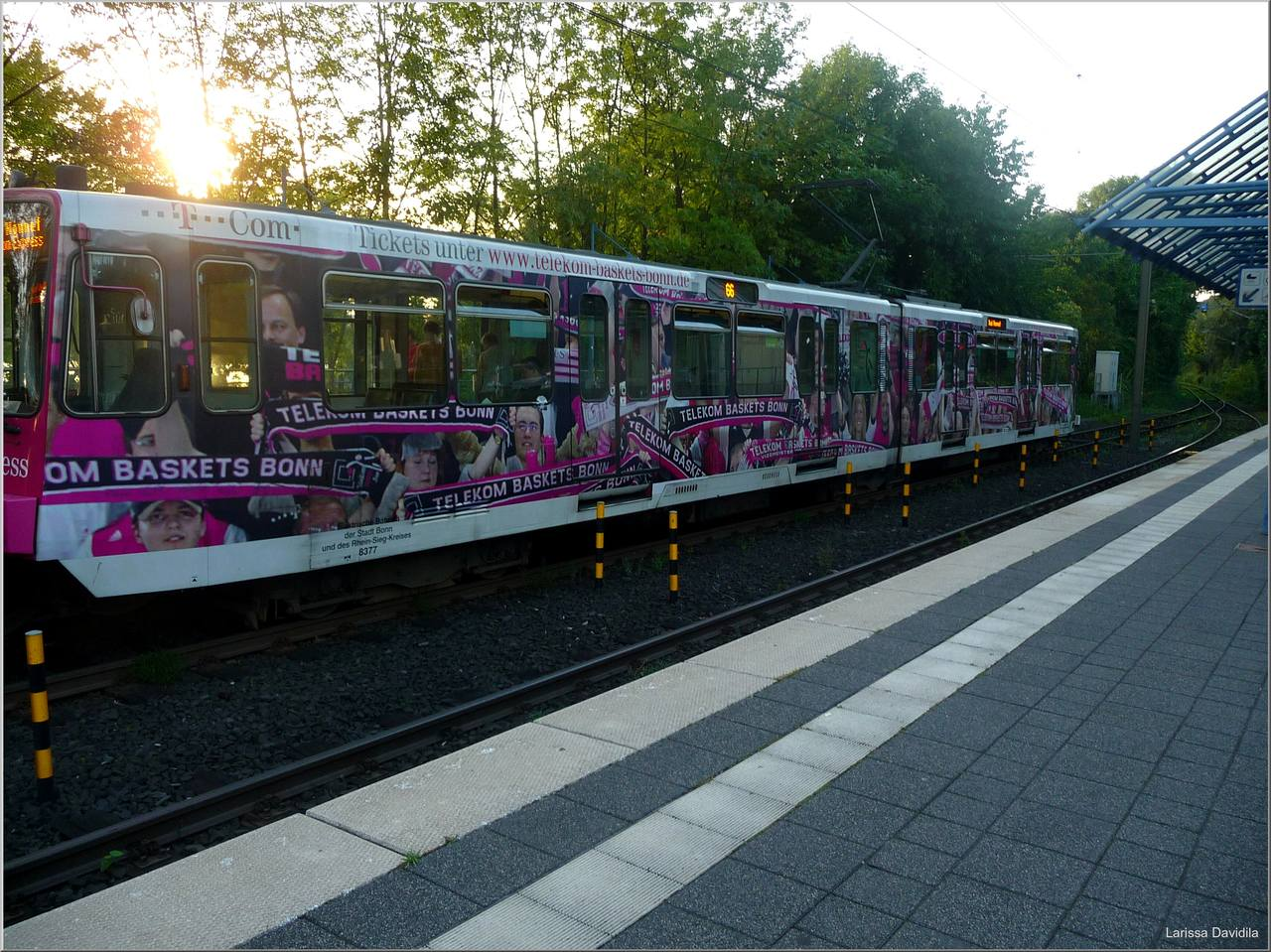 Linz am Rhein. 18.08.09 d (76)