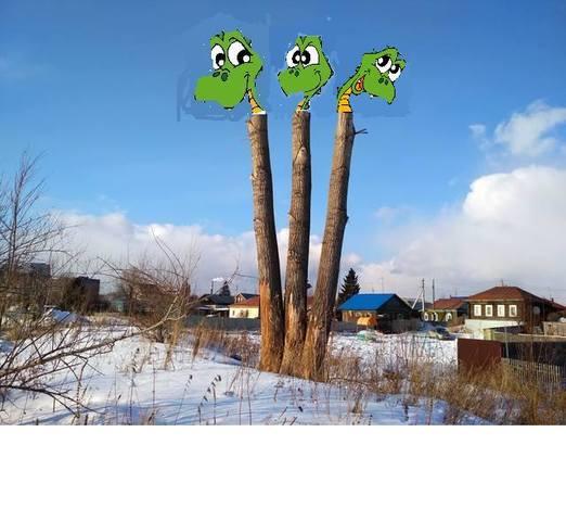 http://images.vfl.ru/ii/1552931310/926bab1d/25818172_m.jpg