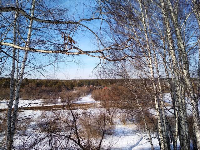 http://images.vfl.ru/ii/1553354339/4265a816/25888716_m.jpg
