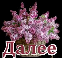 Цветы-Сирень15