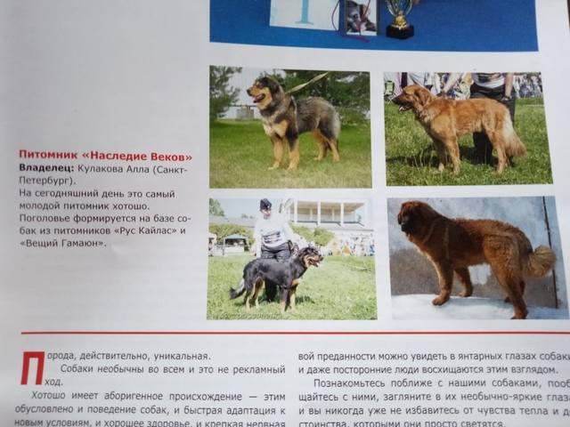 http://images.vfl.ru/ii/1560079052/ef9be835/26830985_m.jpg