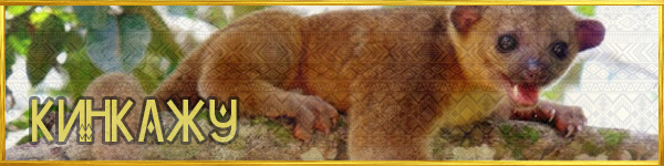 https://images.vfl.ru/ii/1561579546/1b678961/27018945.png