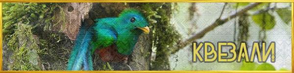https://images.vfl.ru/ii/1561579546/57b19fc6/27018944.png