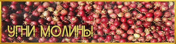 https://images.vfl.ru/ii/1561626280/30493302/27023905.png