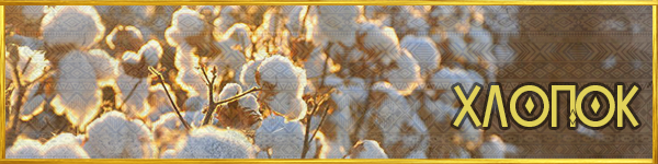 https://images.vfl.ru/ii/1561626644/05b34440/27023976.png