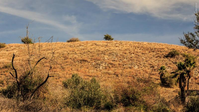 VFL.RU - ваш фотохостинг Израиль Израиль | на берегах Галилейского моря 27134175 m