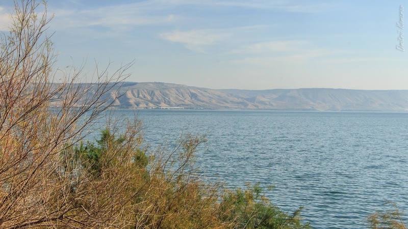 VFL.RU - ваш фотохостинг Израиль Израиль | на берегах Галилейского моря 27134180 m