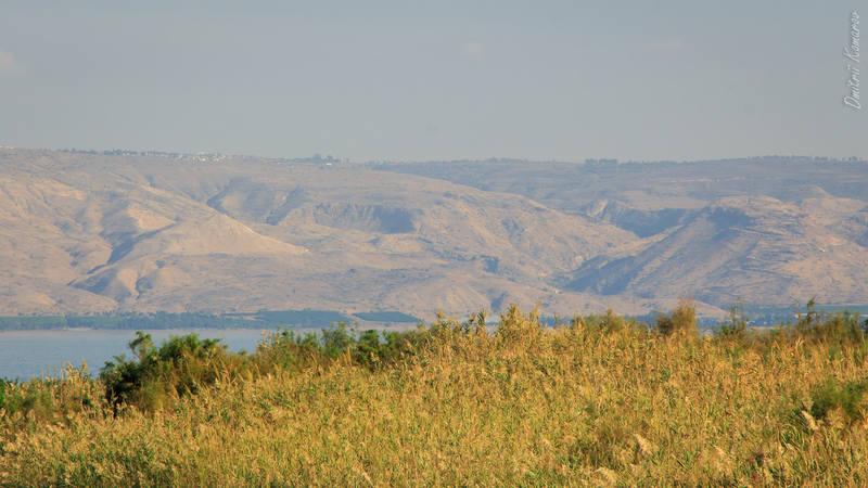 VFL.RU - ваш фотохостинг Израиль Израиль | на берегах Галилейского моря 27134183 m