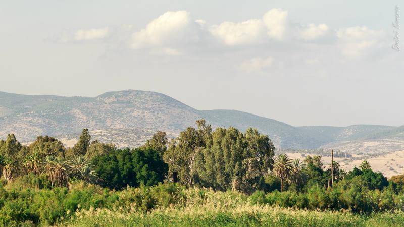 VFL.RU - ваш фотохостинг Израиль Израиль | на берегах Галилейского моря 27134186 m
