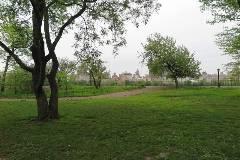 Центральный парк Нью-Йорка