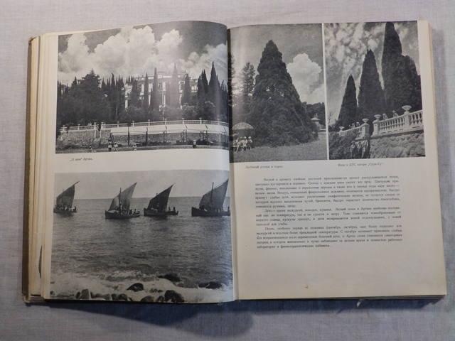 1940 год «АРТЕК» Медгиз, тираж 3 тыс. экземпляров (Книга-альбом) (67)
