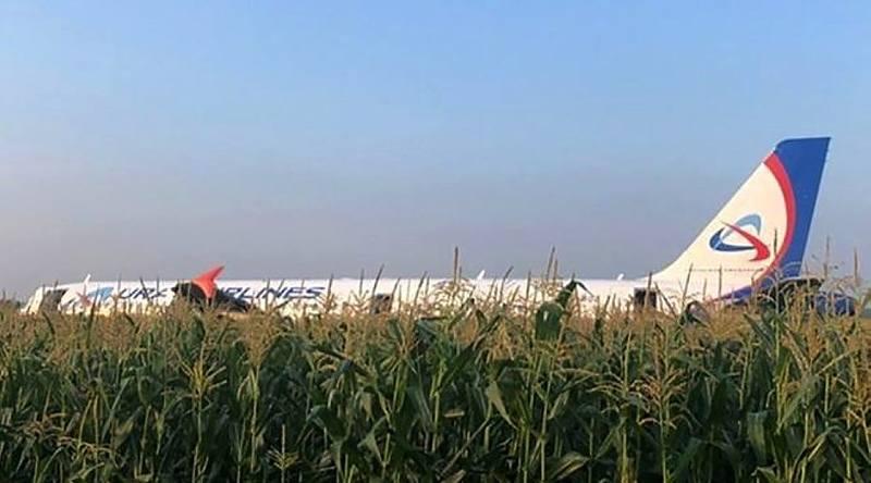 Жесткая посадка в кукурузное поле в Жуковском