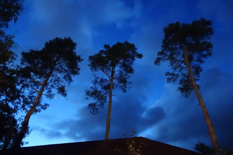 Вечерние дачные фото