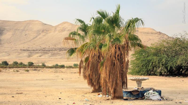 VFL.RU - ваш фотохостинг Израиль Израиль | у самого Мертвого моря 27818004 m