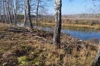 http://images.vfl.ru/ii/1571112089/713e9888/28196479_s.jpg