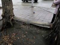 http://images.vfl.ru/ii/1572067863/8dd03a1e/28328764_s.jpg