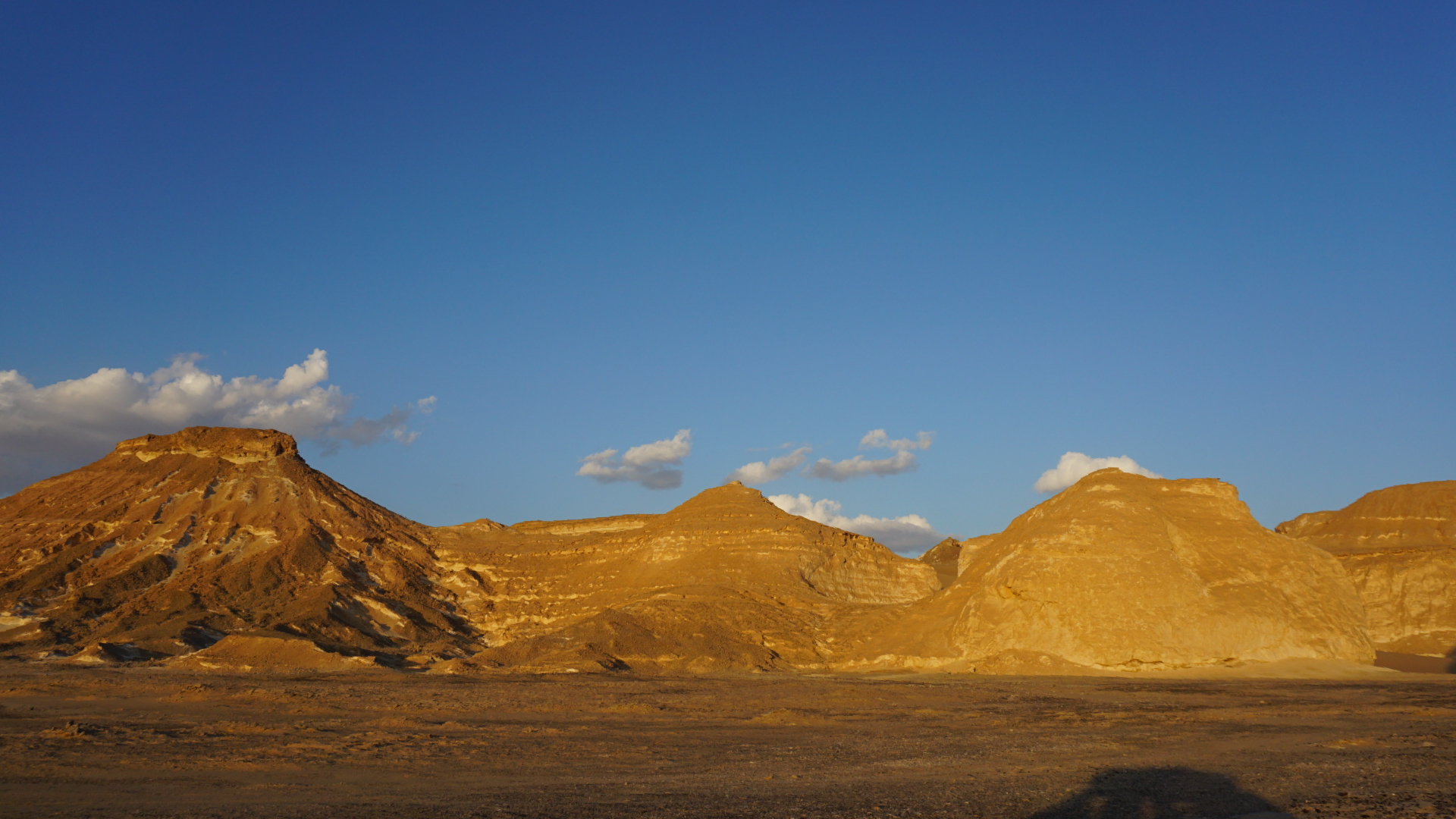 энергичные работники фото горы вдоль реки чаган узун называется одно