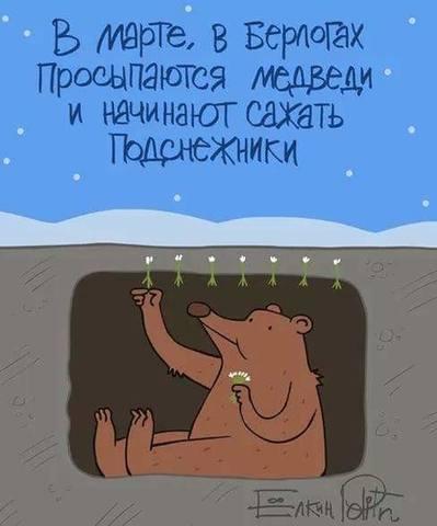http://images.vfl.ru/ii/1576240087/14377e10/28896755_m.jpg