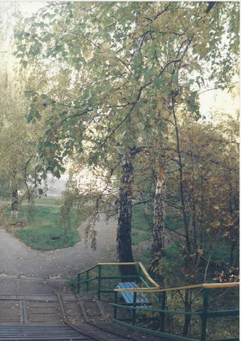 http://images.vfl.ru/ii/1577621211/773d7a17/29058827_m.jpg