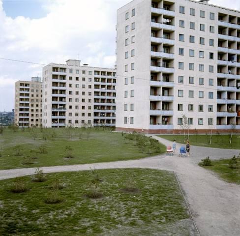 http://images.vfl.ru/ii/1578322590/223d3684/29122016_m.jpg