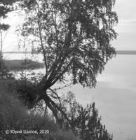 http://images.vfl.ru/ii/1578821997/e8db0516/29177591_s.jpg