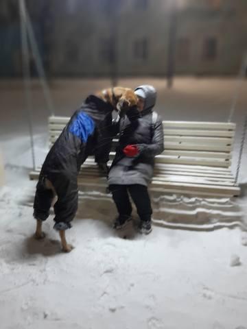 http://images.vfl.ru/ii/1579682955/0ef1598b/29282911_m.jpg