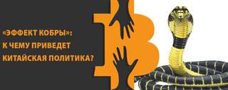 http://images.vfl.ru/ii/1579888021/ef49fc4d/29312350.jpg