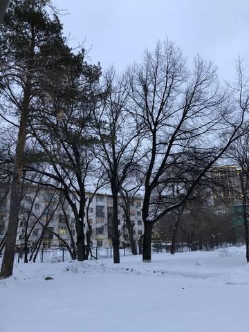 http://images.vfl.ru/ii/1582979211/20a26d11/29734682_m.jpg