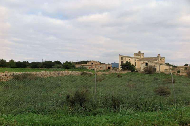 Пальма де Мальорка