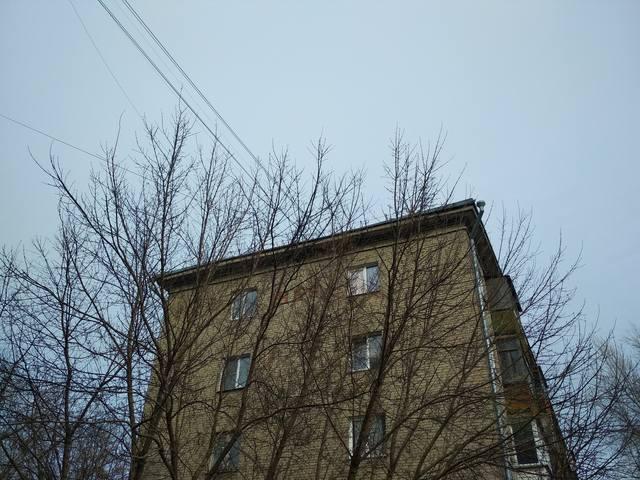 http://images.vfl.ru/ii/1584318144/c6c39431/29888497_m.jpg