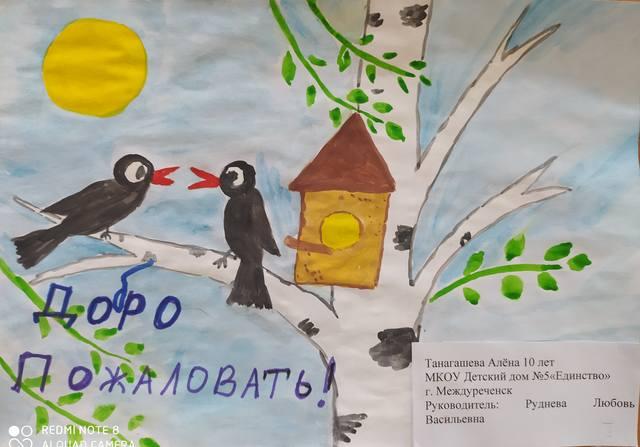 Итоги экологической акции «Птицеград» 2020