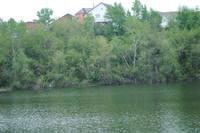 http://images.vfl.ru/ii/1586508239/048f7271/30157420_s.jpg