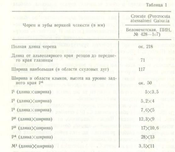 https://images.vfl.ru/ii/1592109569/7d87db71/30801108.png