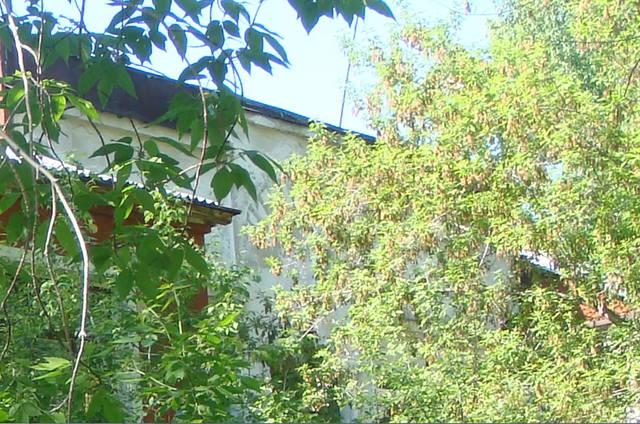 http://images.vfl.ru/ii/1592460574/12d7e71d/30838402_m.jpg