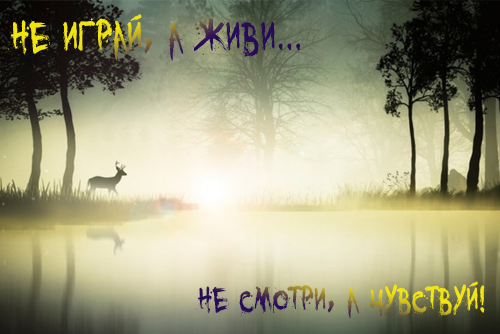http://images.vfl.ru/ii/1592839812/368394f3/30879119.png