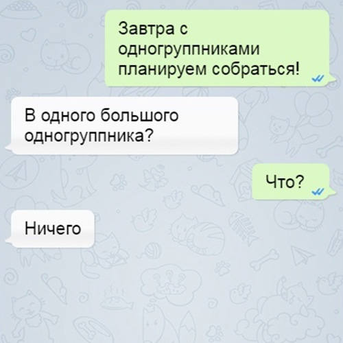 Позитивные новости Петербурга + юмор 500-6