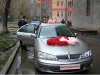 http://images.vfl.ru/ii/1594924774/040a4aa1/31094186_s.jpg