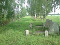 http://images.vfl.ru/ii/1595776405/c310461b/31172924_s.jpg