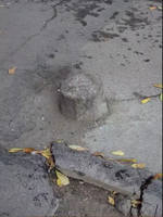 http://images.vfl.ru/ii/1595868627/ecc5067d/31182855_s.jpg