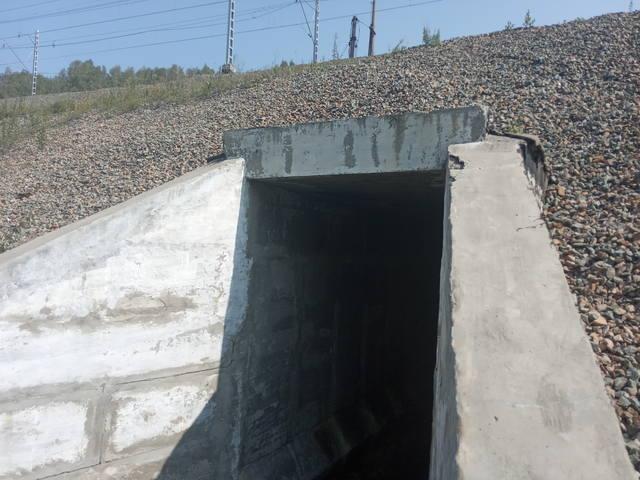 http://images.vfl.ru/ii/1597030252/893922a8/31299398_m.jpg