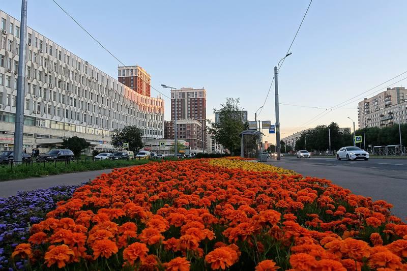 Окраины Петербурга