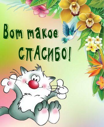 http://images.vfl.ru/ii/1598513242/a68819a9/31459948_m.jpg