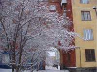 http://images.vfl.ru/ii/1600192344/133773d9/31641608_s.jpg