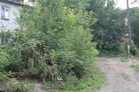 http://images.vfl.ru/ii/1601039199/c5e7167f/31741123_s.jpg