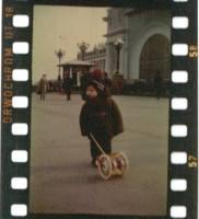 http://images.vfl.ru/ii/1601399262/428bd142/31782769_s.jpg