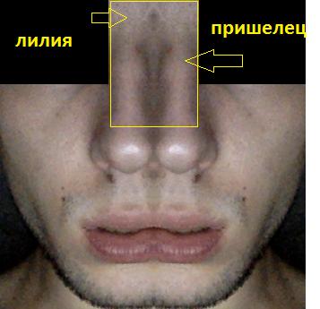 http://images.vfl.ru/ii/1602267859/e47f72b3/31887304_m.png