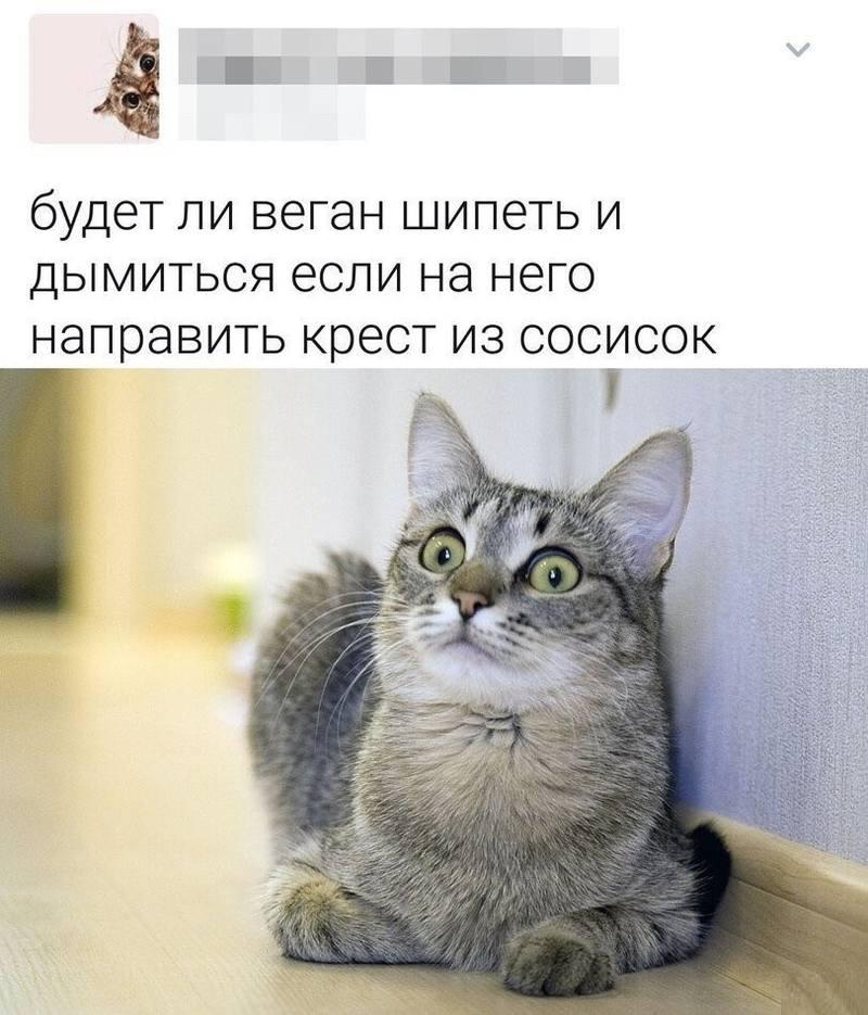 YU9yPtdOvk