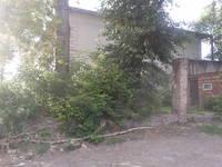 http://images.vfl.ru/ii/1604396884/a9487784/32167890_s.jpg