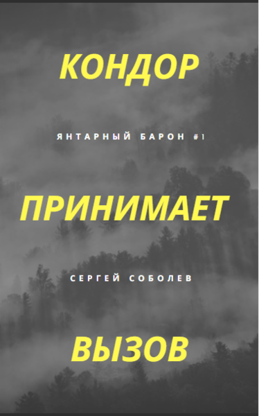 Цикл Кондор Сергей Соболев