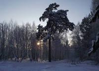 http://images.vfl.ru/ii/1606487872/19da7416/32461770_s.jpg